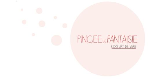 pinceedefantaisie_logo